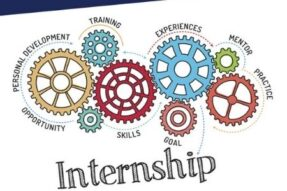 Online Summer Internship Programme by The Cyber Blog India: Apply by May 10
